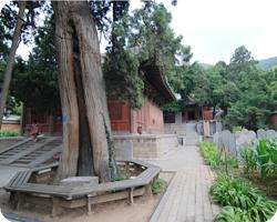 Where is the Shaolin Temple - Chuzu Nunnery