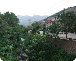 Wangzhigou Village