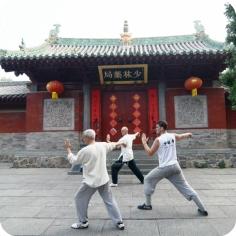 CK Martial Hearts Shaolin Temple Experience Taichi Practice