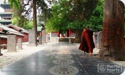 CK Martial Hearts Shaolin Temple Kung Fu Training Experiences - Sidebar 4