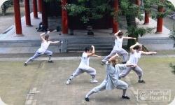 CK Martial Hearts Shaolin Temple Kung Fu Training Experiences - Sidebar2